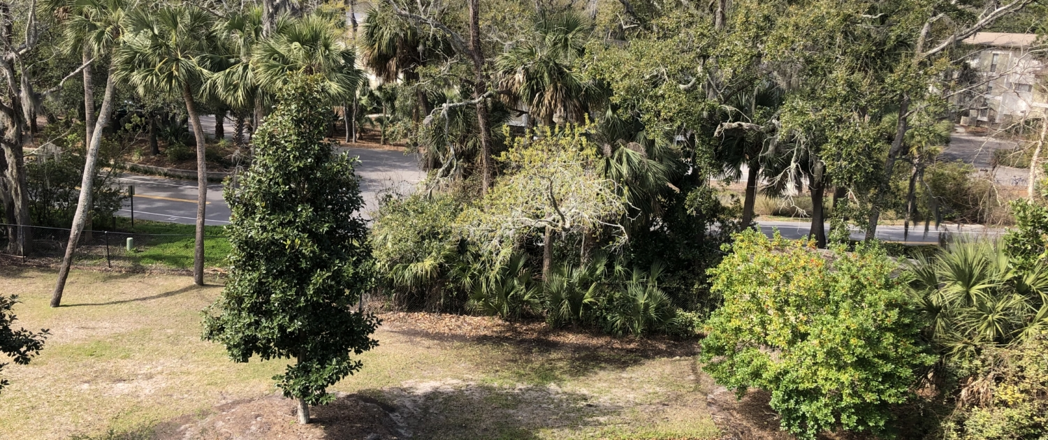 Xanadu-Villas-Hilton-Head-View-Pond